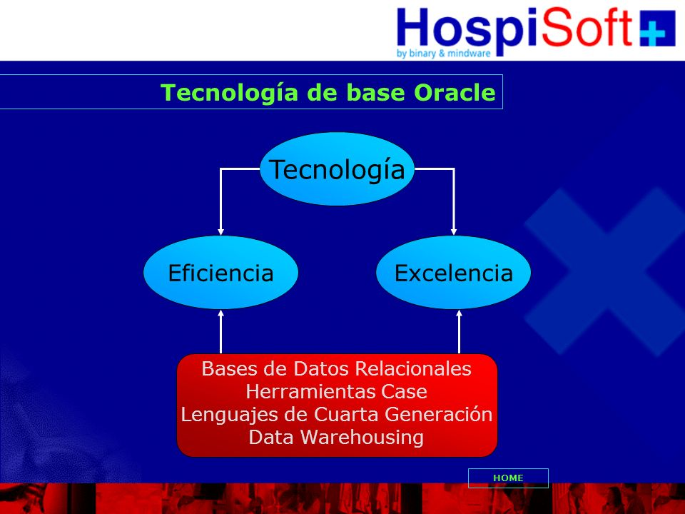 Eficiencia Tecnología Excelencia Bases de Datos Relacionales Herramientas Case Lenguajes de Cuarta Generación Data Warehousing Tecnología de base Orac