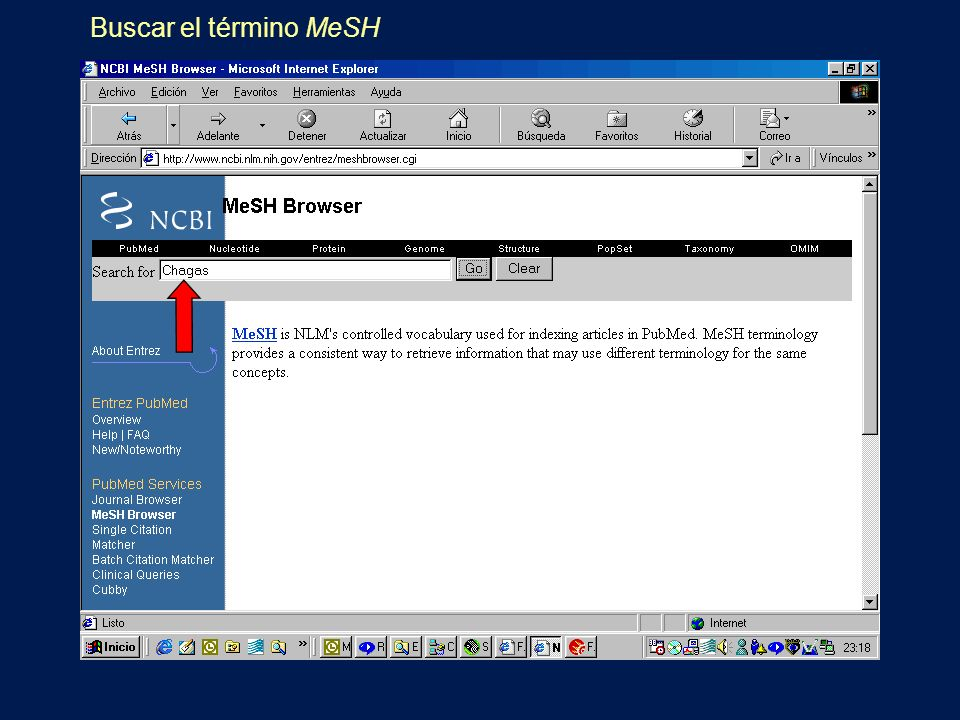 Buscar el término MeSH
