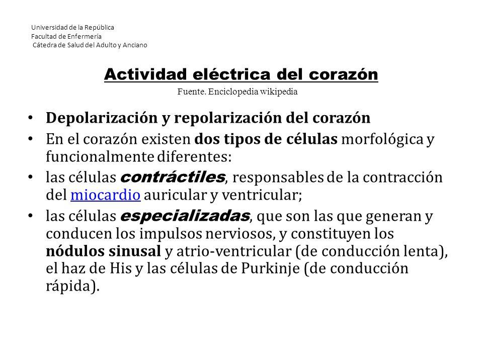Universidad de la República Facultad de Enfermería Cátedra de Salud del Adulto y Anciano Actividad eléctrica del corazón Depolarización y repolarizaci