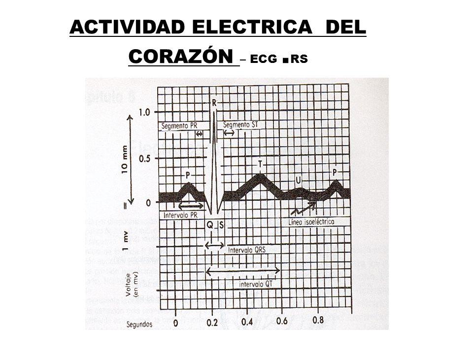 ACTIVIDAD ELECTRICA DEL CORAZÓN – ECG. RS