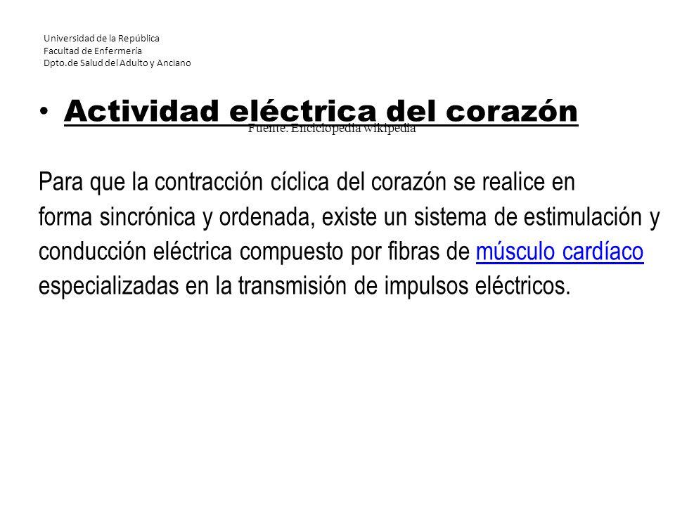 Universidad de la República Facultad de Enfermería Dpto.de Salud del Adulto y Anciano Actividad eléctrica del corazón Para que la contracción cíclica
