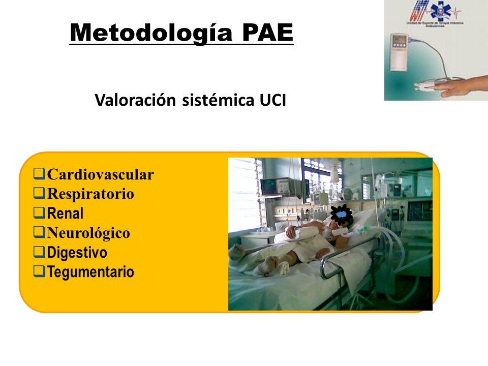 Cardiovascular Respiratorio Renal Neurológico Digestivo Tegumentario Metodología PAE Valoración sistémica UCI