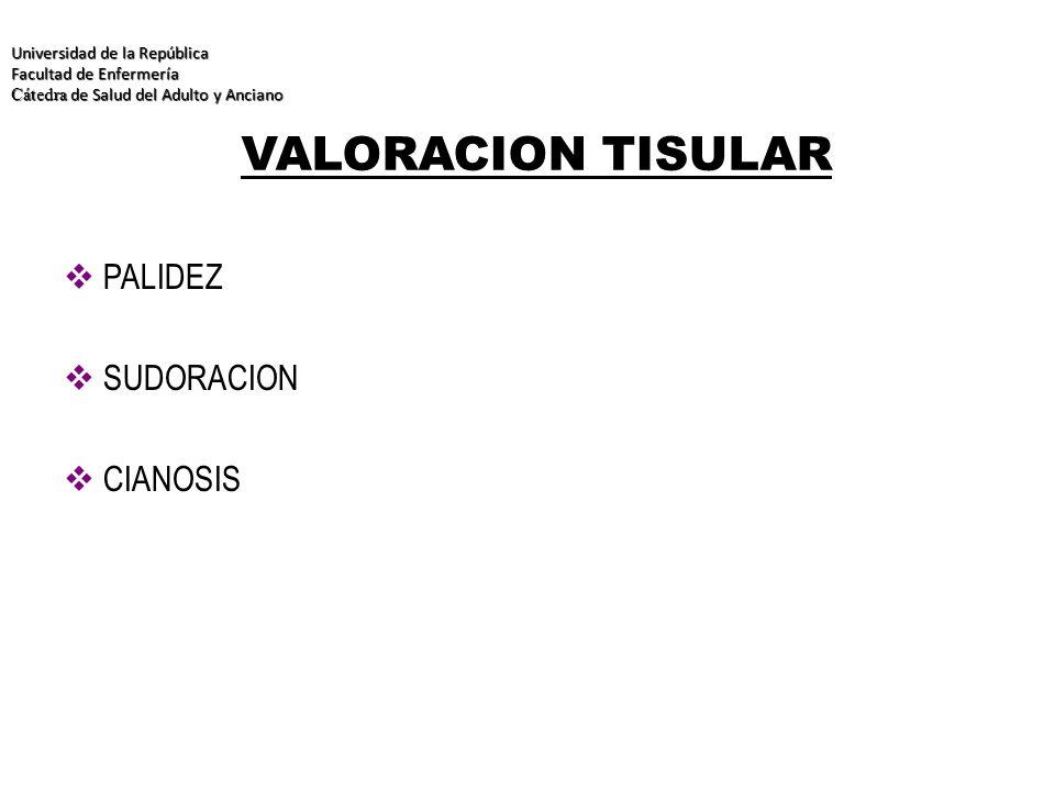 VALORACION TISULAR PALIDEZ SUDORACION CIANOSIS Universidad de la República Facultad de Enfermería Cátedra de Salud del Adulto y Anciano Universidad de