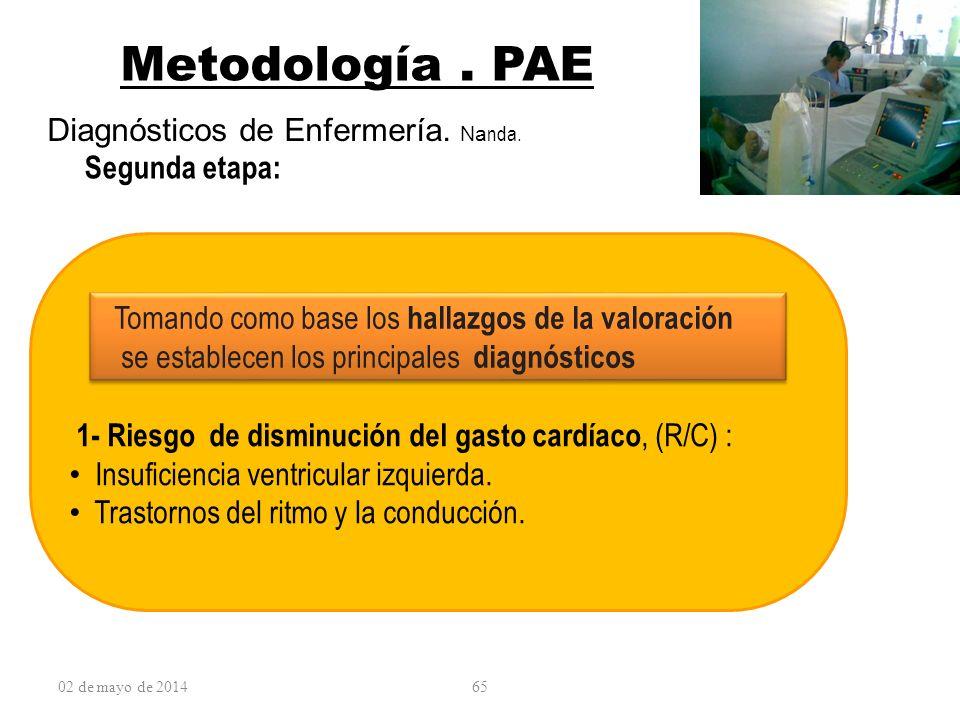 02 de mayo de 201465 Metodología. PAE Diagnósticos de Enfermería. Na nda. Segunda etapa: Tomando como base los hallazgos de la valoración se establece