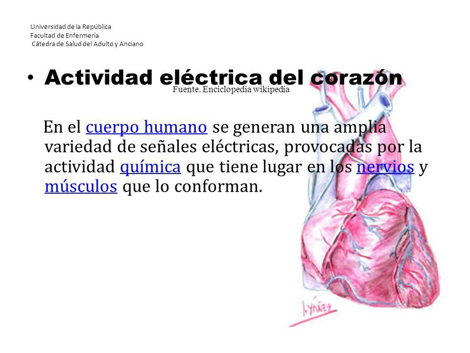 Universidad de la República Facultad de Enfermería Cátedra de Salud del Adulto y Anciano Actividad eléctrica del corazón En el cuerpo humano se genera