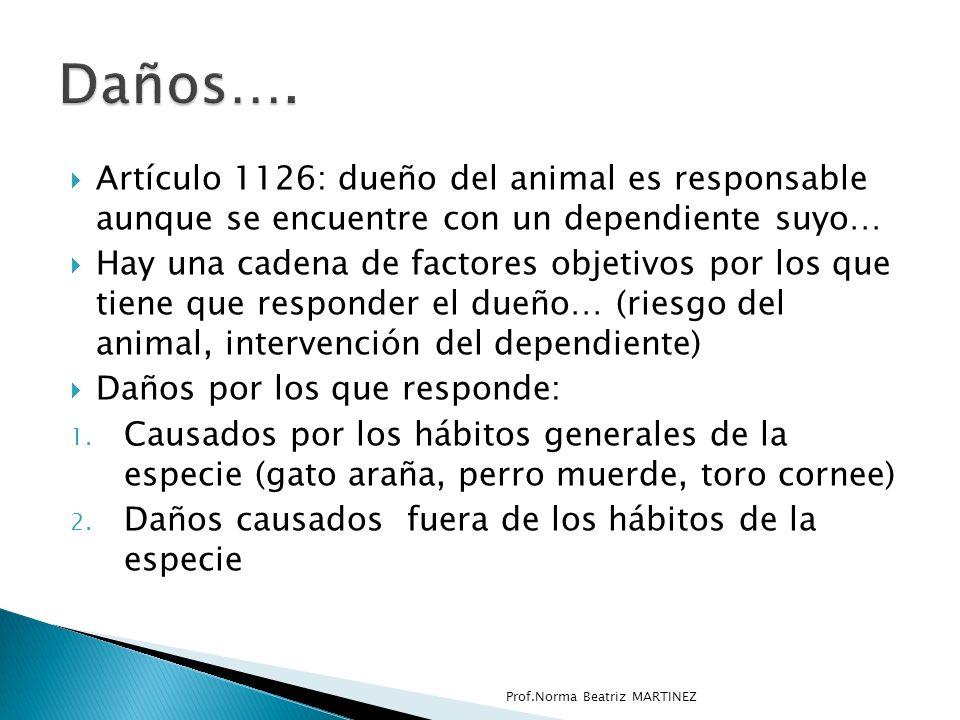 Artículo 1126: dueño del animal es responsable aunque se encuentre con un dependiente suyo… Hay una cadena de factores objetivos por los que tiene que responder el dueño… (riesgo del animal, intervención del dependiente) Daños por los que responde: 1.