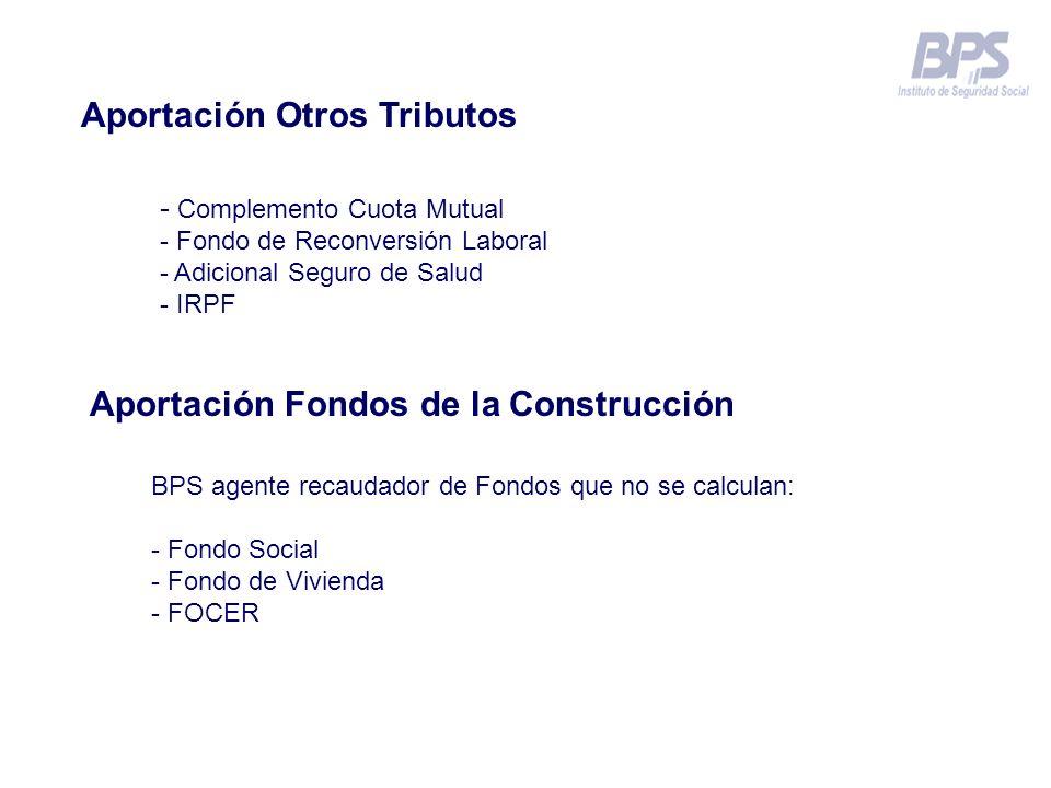 Aportación Otros Tributos - Complemento Cuota Mutual - Fondo de Reconversión Laboral - Adicional Seguro de Salud - IRPF Aportación Fondos de la Constr