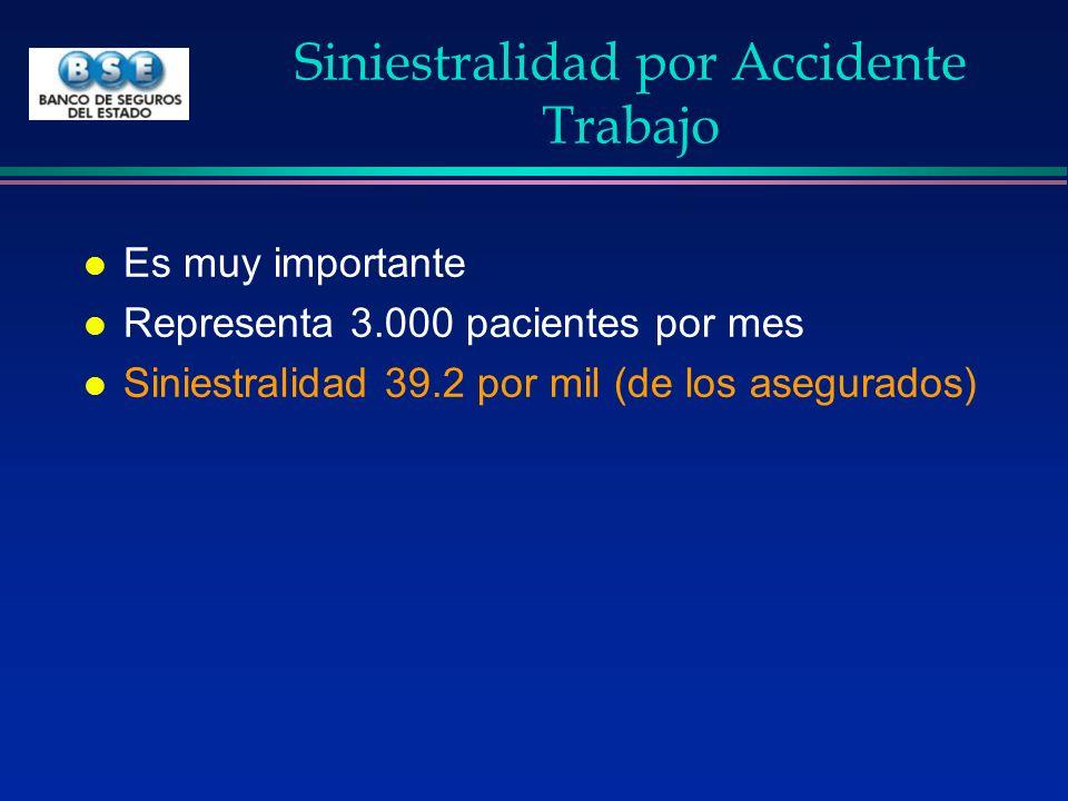 Siniestralidad por Accidente Trabajo l Es muy importante l Representa 3.000 pacientes por mes l Siniestralidad 39.2 por mil (de los asegurados)