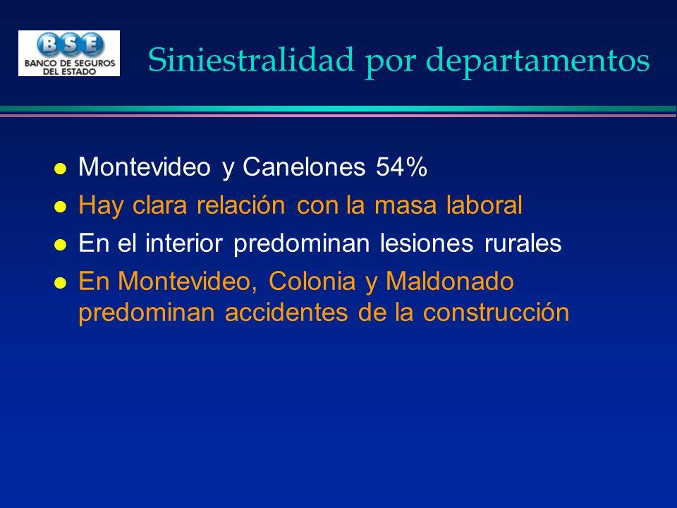 Siniestralidad por departamentos l Montevideo y Canelones 54% l Hay clara relación con la masa laboral l En el interior predominan lesiones rurales l
