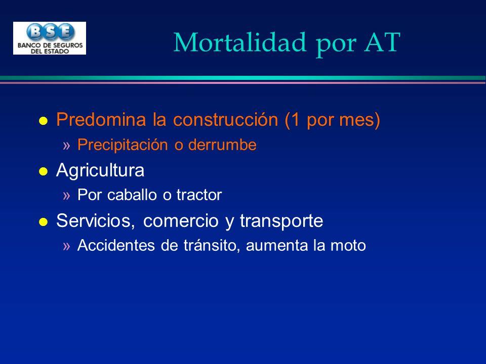 Mortalidad por AT l Predomina la construcción (1 por mes) »Precipitación o derrumbe l Agricultura »Por caballo o tractor l Servicios, comercio y trans