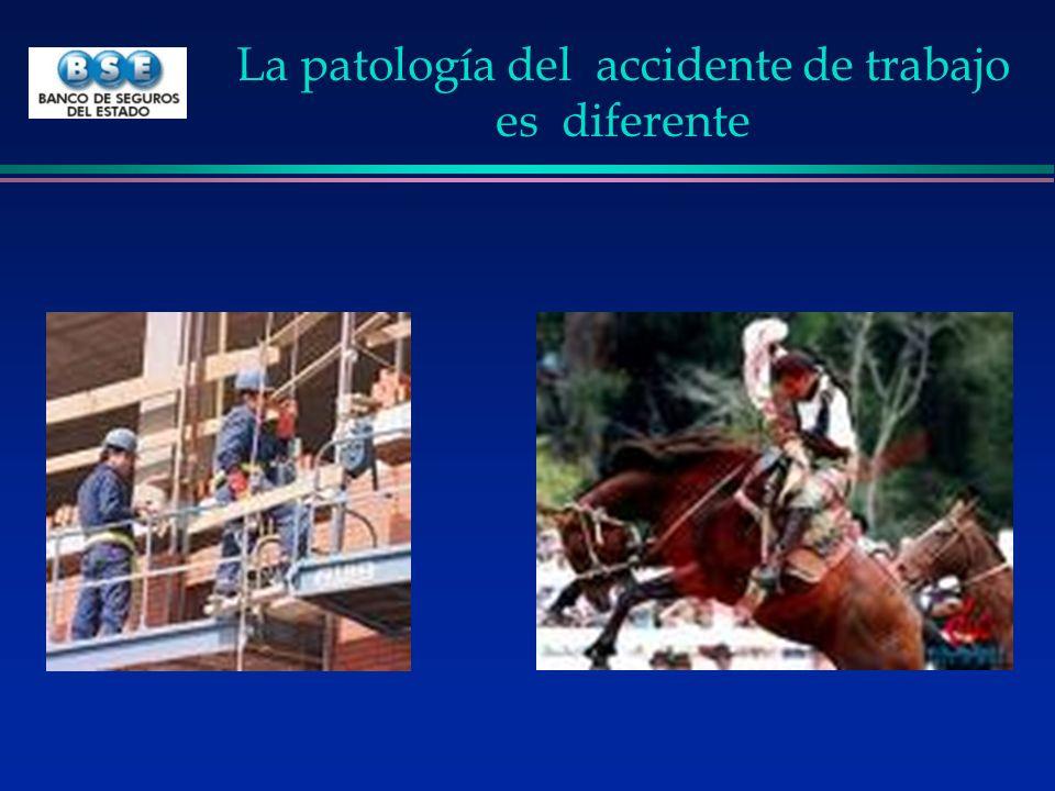 Conclusiones Accidente de trabajo l Es diferente: joven, accidente moto, construcción o caballo l Muy importante »> 50.000 accidentes »Alta mortalidad »Incapacidad permanente (700 /año) l Exige un tratamiento distinto »Las cirugías aumentaron 3 veces en traumatología