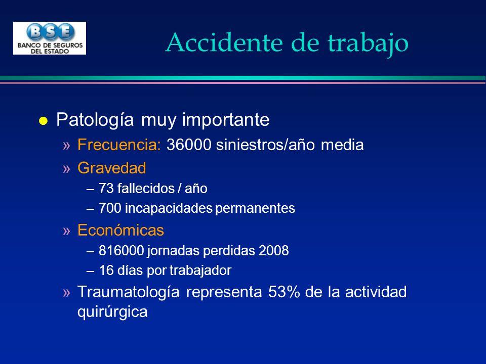 Siniestralidad por tipo de trabajo l En Uruguay son muy importantes los accidentes rurales »Más que en la construcción »Sobretodo en jinetes l La industria es la principal causa l En el comercio y los servicios están aumentando