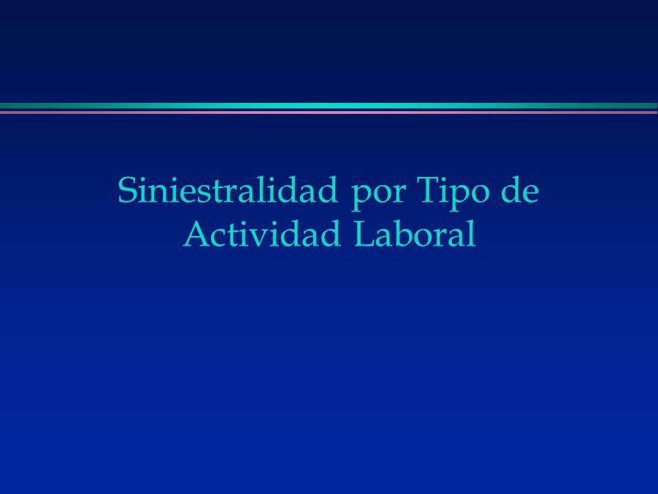 Siniestralidad por Tipo de Actividad Laboral