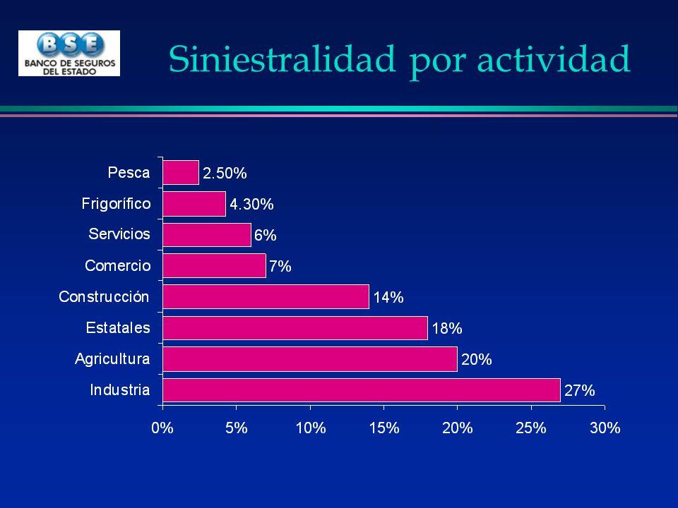 Siniestralidad por actividad