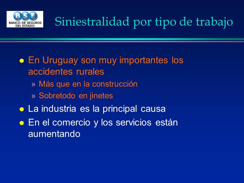 Siniestralidad por tipo de trabajo l En Uruguay son muy importantes los accidentes rurales »Más que en la construcción »Sobretodo en jinetes l La indu