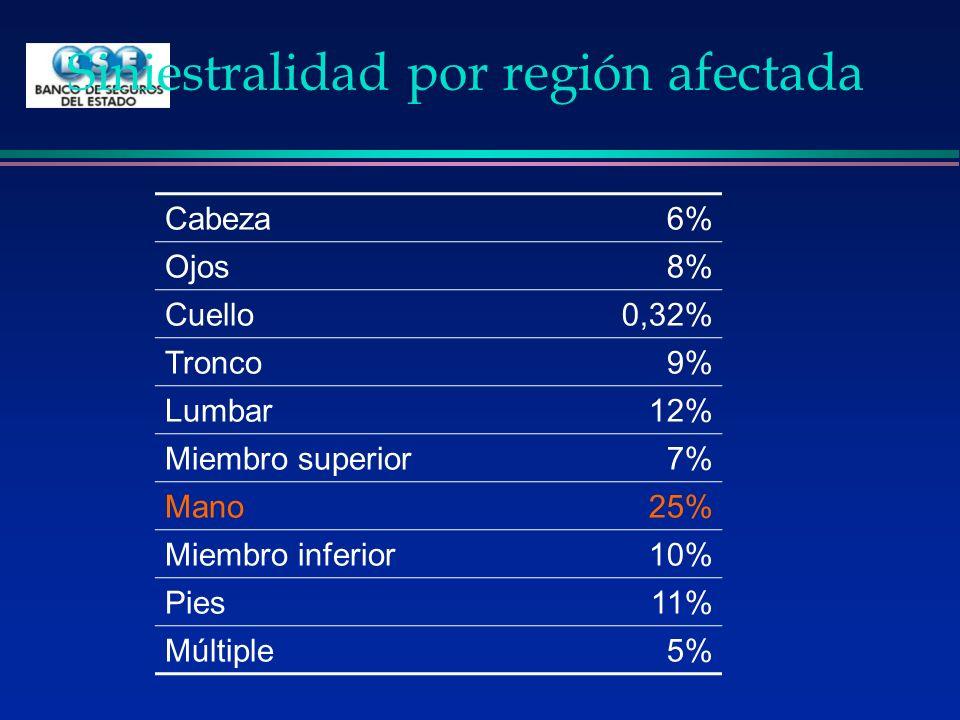 Siniestralidad por región afectada Cabeza6% Ojos8% Cuello0,32% Tronco9% Lumbar12% Miembro superior7% Mano25% Miembro inferior10% Pies11% Múltiple5%