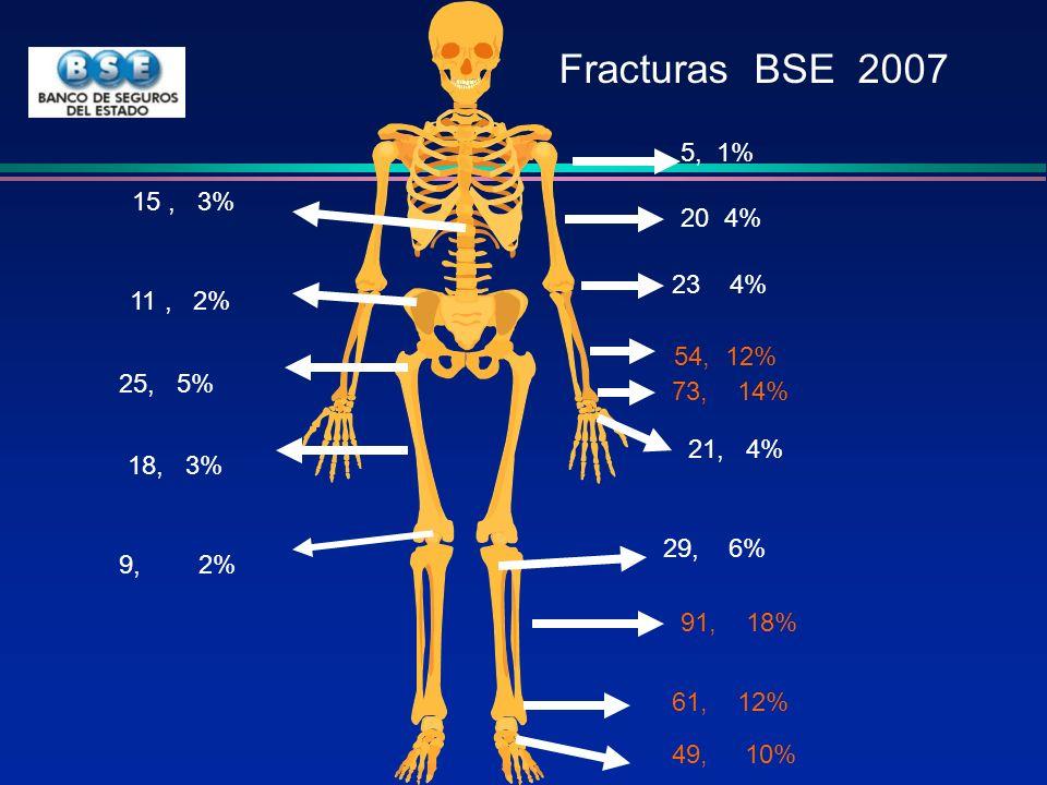 73, 14% 54, 12% 5, 1% 20 4% 23 4% 11, 2% 25, 5% 15, 3% 18, 3% 21, 4% 91, 18% 61, 12% 49, 10% 9, 2% 29, 6% Fracturas BSE 2007