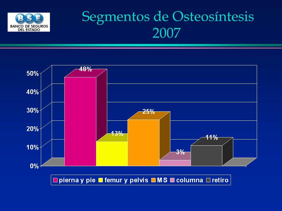 Segmentos de Osteosíntesis 2007