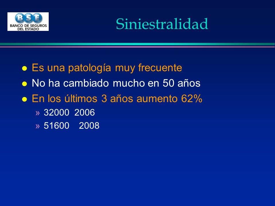 Siniestralidad por región l Más frecuente en miembro superior 32% »25% la mano –Zona más frecuente –Causa más frecuente de incapacidad l 20% miembro inferior l 12% columna l Lesiones de los ojos 8%