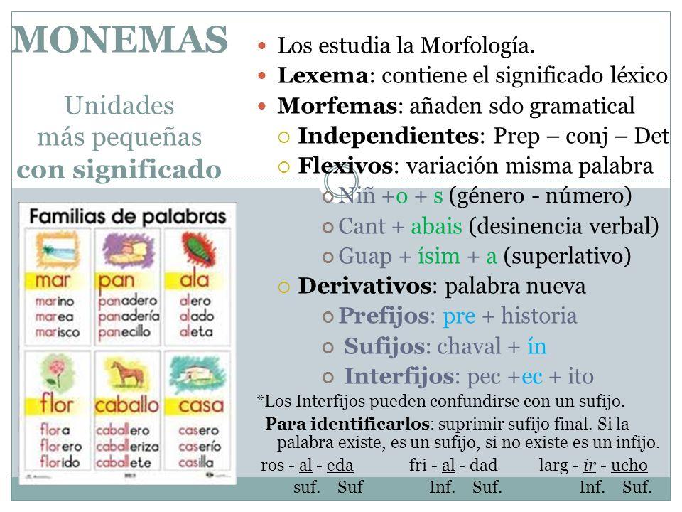 MONEMAS Unidades más pequeñas con significado Los estudia la Morfología. Lexema: contiene el significado léxico Morfemas: añaden sdo gramatical Indepe