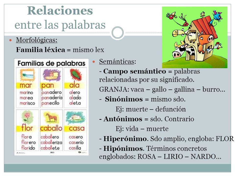 Relaciones entre las palabras Morfológicas: Familia léxica = mismo lex Semánticas: - Campo semántico = palabras relacionadas por su significado. GRANJ