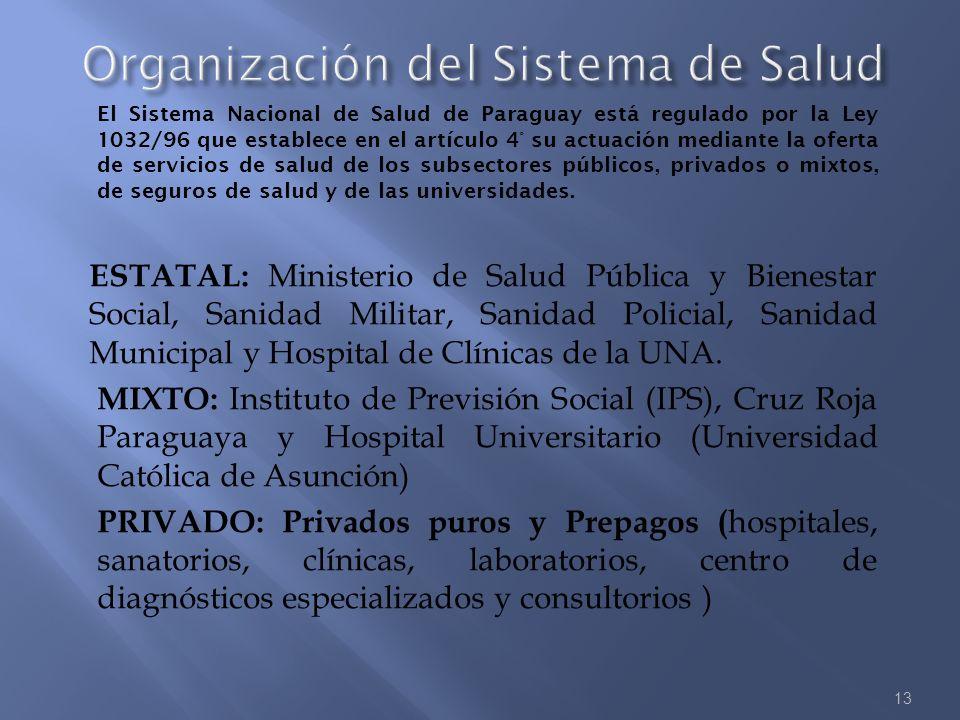 13 El Sistema Nacional de Salud de Paraguay está regulado por la Ley 1032/96 que establece en el artículo 4° su actuación mediante la oferta de servic