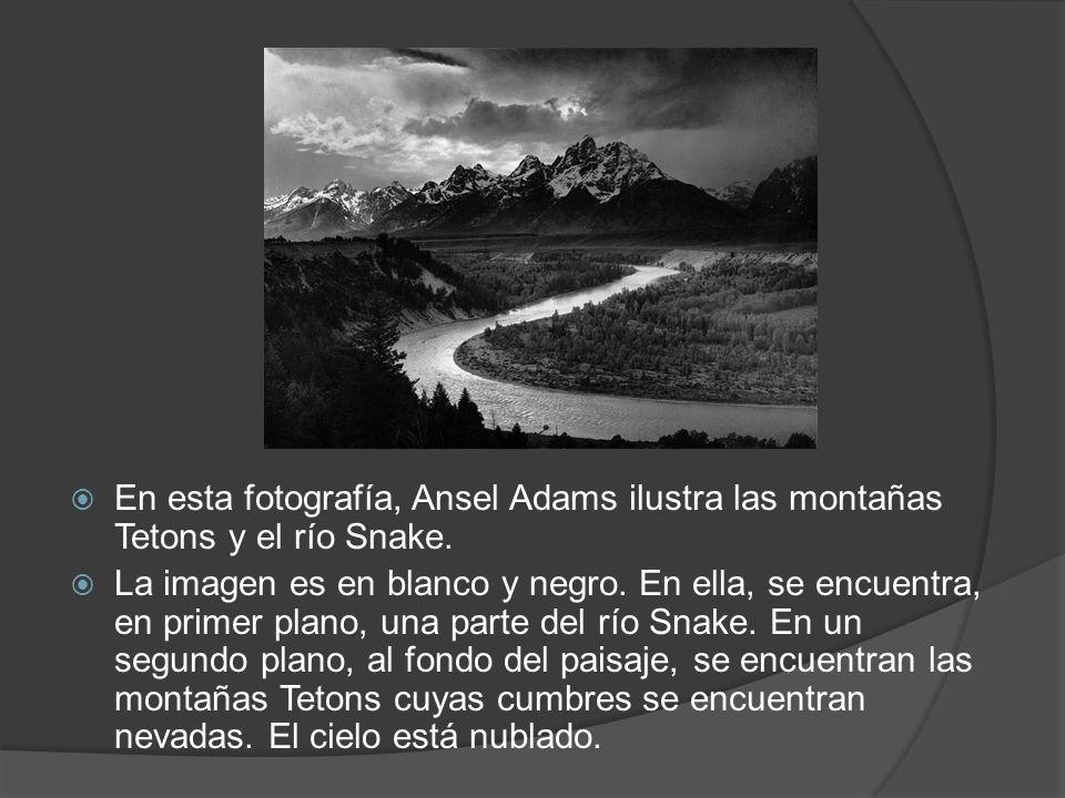 En esta fotografía, Ansel Adams ilustra las montañas Tetons y el río Snake. La imagen es en blanco y negro. En ella, se encuentra, en primer plano, un