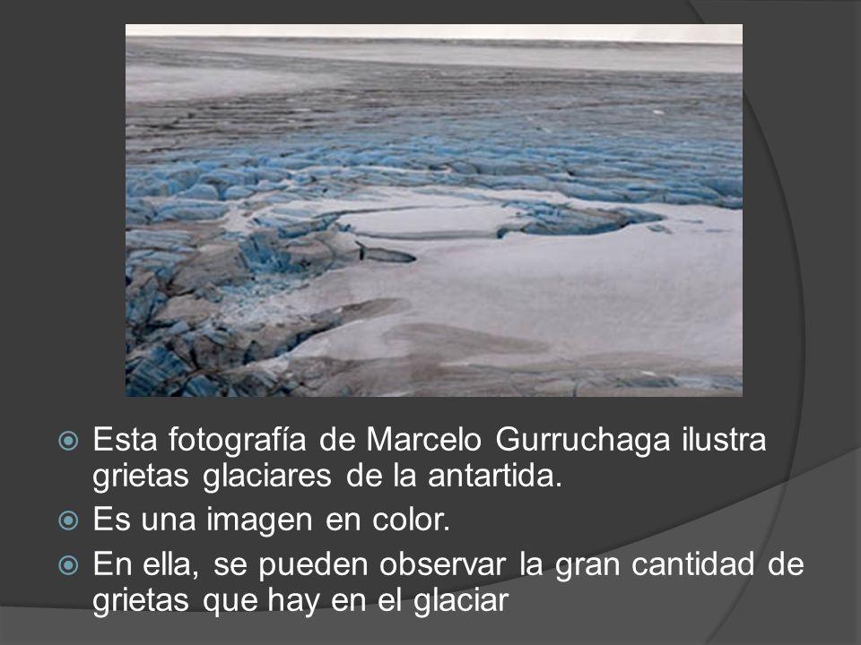 Esta fotografía de Marcelo Gurruchaga ilustra grietas glaciares de la antartida. Es una imagen en color. En ella, se pueden observar la gran cantidad