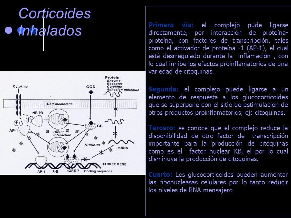 Antihistamínicos de primera generación Clorfeniramina Alergidyl Celestamine Un clásico Se fracciona la dosis por la somnolencia Inyectable Prometazina