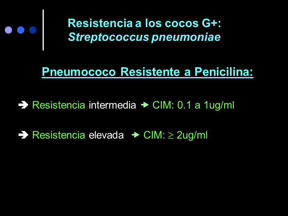 Amoxicilina 1 g c/8hs mejoría clínica y Rx 10 días después.