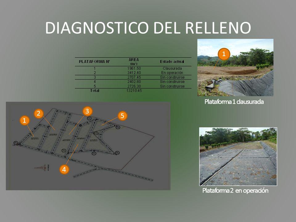 DIAGNOSTICO DEL RELLENO Plataforma 1 clausurada 1 2 3 4 5 1 Plataforma 2 en operación