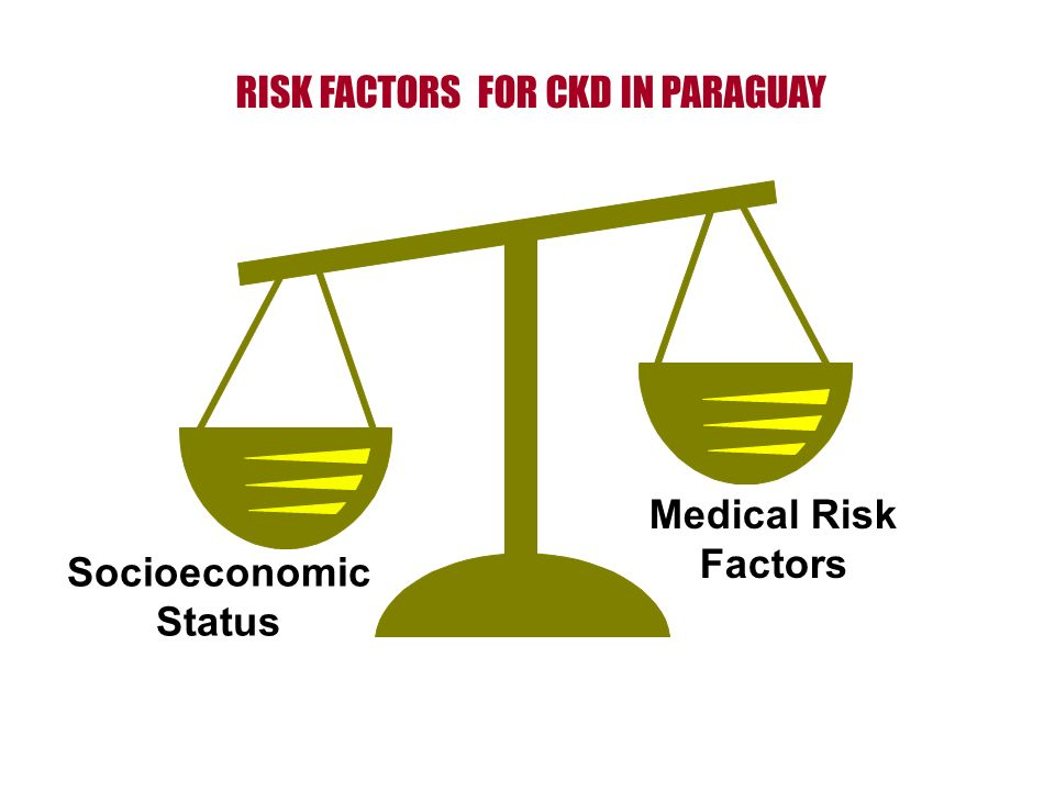 Socioeconomic Status Medical Risk Factors RISK FACTORS FOR CKD IN PARAGUAY