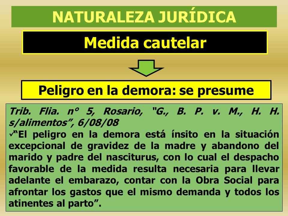 Medida cautelar NATURALEZA JURÍDICA Trib. Flia. n° 5, Rosario, G., B. P. v. M., H. H. s/alimentos, 6/08/08 El peligro en la demora está ínsito en la s