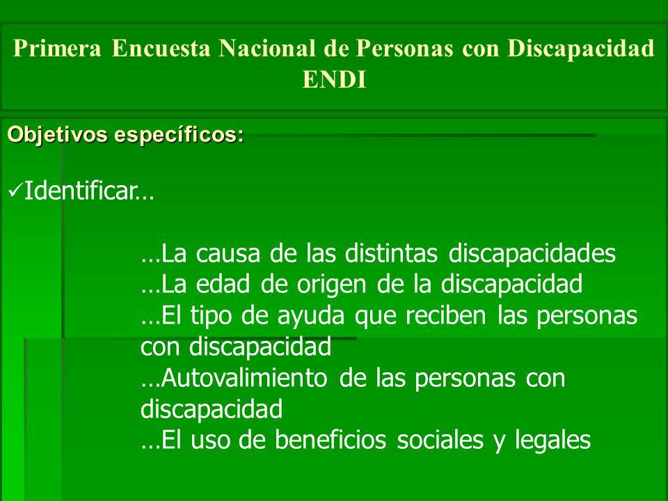 Objetivos específicos: Identificar… …La causa de las distintas discapacidades …La edad de origen de la discapacidad …El tipo de ayuda que reciben las