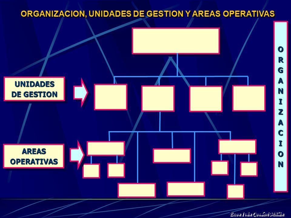 EL MODELO DE GESTION ESTRATEGICA UNIVERSITARIA...Una unidad estratégica de gestión es una unidad de la organización, o un foco de planificación que ag