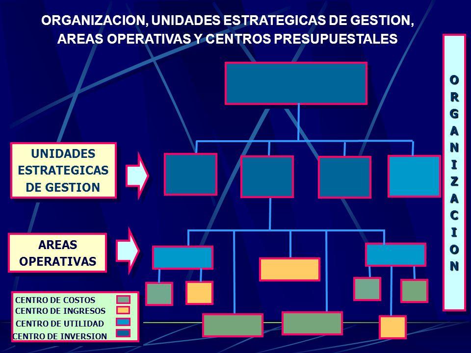 ORGANIZACION, UNIDADES DE GESTION Y AREAS OPERATIVAS ORGANIZACIONORGANIZACION UNIDADES DE GESTION UNIDADES AREASOPERATIVASAREASOPERATIVAS Econ Iván Co