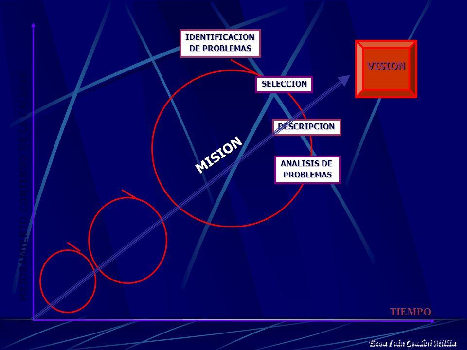 TIEMPO IDENTIFICACION DE PROBLEMAS VISION SELECCION DESCRIPCION ANALISIS DE PROBLEMAS PROGRAMACION SELECCIÓN DE ALTERNATIVAS EJECUCION ANALISIS PARA L