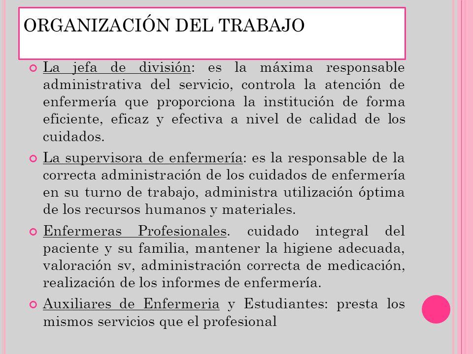 La jefa de división: es la máxima responsable administrativa del servicio, controla la atención de enfermería que proporciona la institución de forma