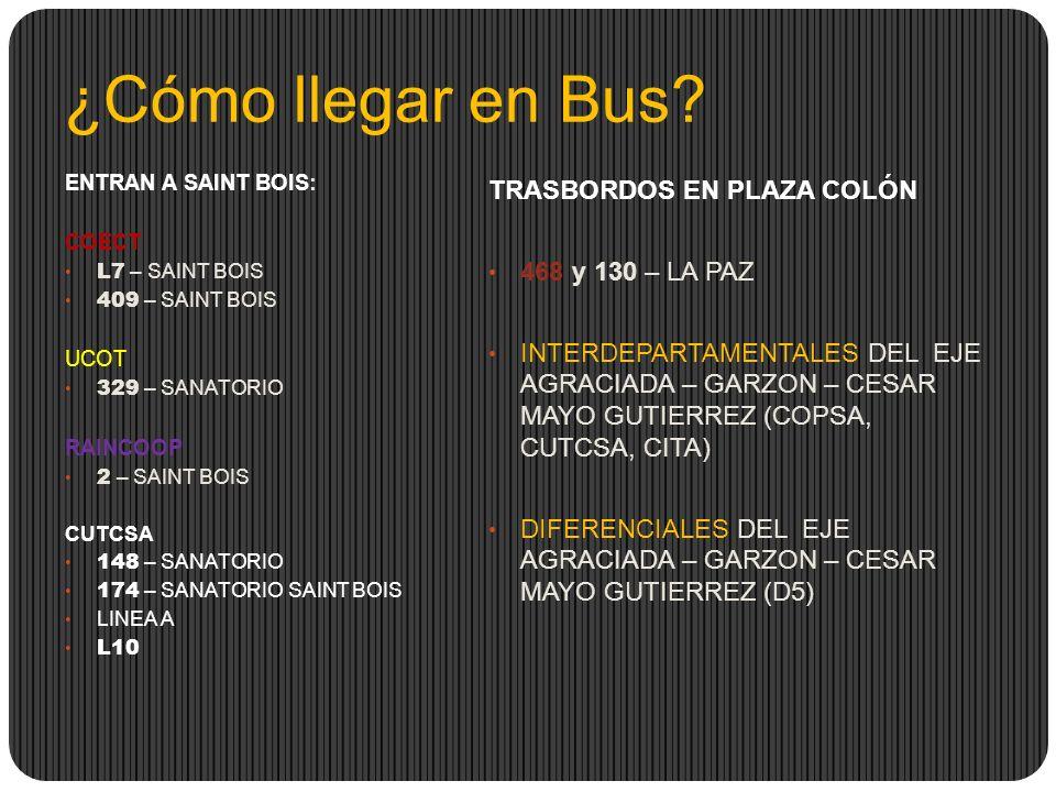 ¿Cómo llegar en Bus.