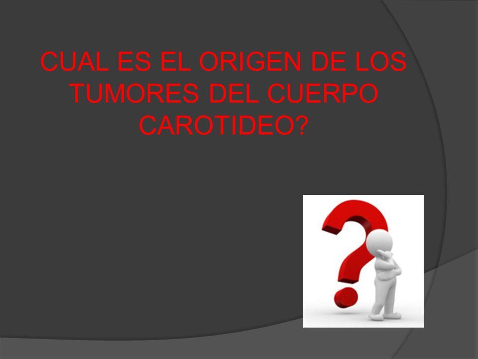 CUAL ES EL ORIGEN DE LOS TUMORES DEL CUERPO CAROTIDEO?