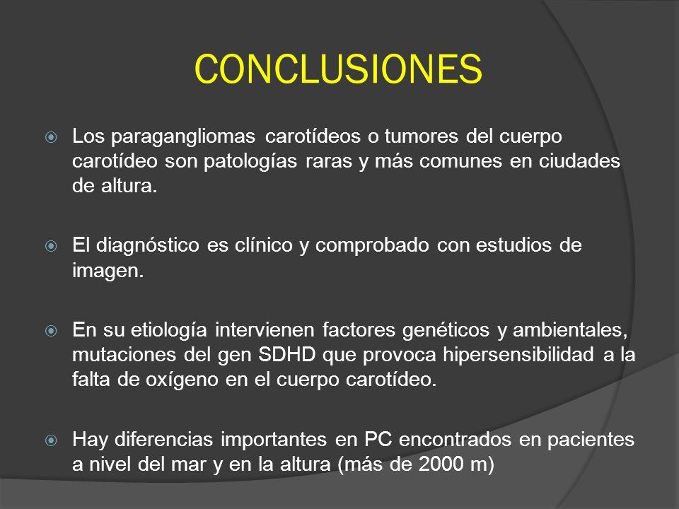 CONCLUSIONES Los paragangliomas carotídeos o tumores del cuerpo carotídeo son patologías raras y más comunes en ciudades de altura. El diagnóstico es