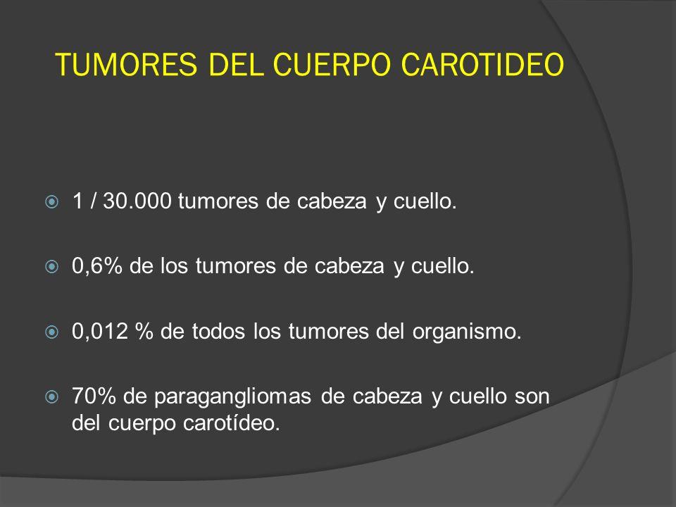 1 / 30.000 tumores de cabeza y cuello. 0,6% de los tumores de cabeza y cuello. 0,012 % de todos los tumores del organismo. 70% de paragangliomas de ca