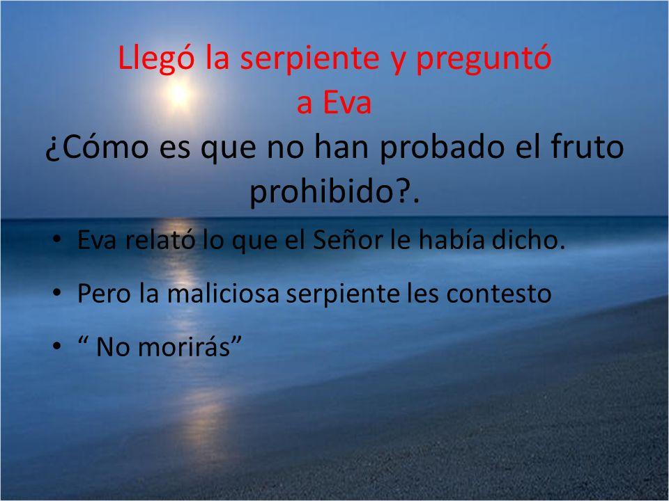 Llegó la serpiente y preguntó a Eva ¿Cómo es que no han probado el fruto prohibido?. Eva relató lo que el Señor le había dicho. Pero la maliciosa serp
