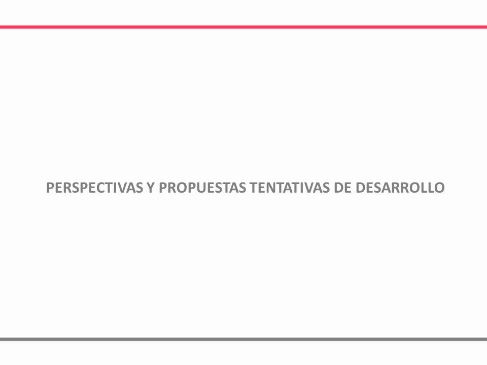 PERSPECTIVAS Y PROPUESTAS TENTATIVAS DE DESARROLLO