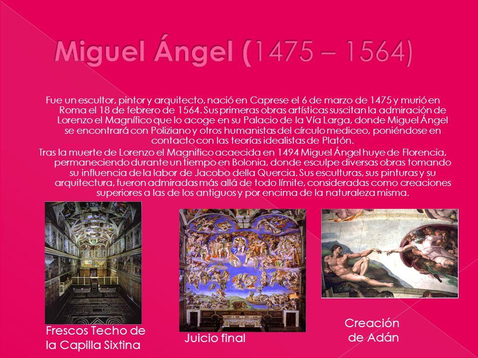 Fue un escultor, pintor y arquitecto, nació en Caprese el 6 de marzo de 1475 y murió en Roma el 18 de febrero de 1564. Sus primeras obras artísticas s