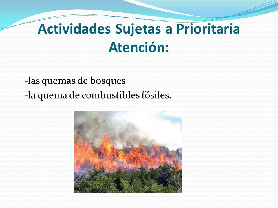 Actividades Sujetas a Prioritaria Atención: -las quemas de bosques -la quema de combustibles fósiles.