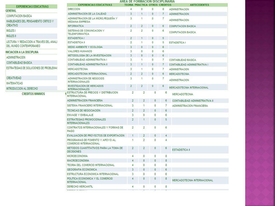 REQUERIMIENTOS DE INGRESO: Estudios concluidos de bachillerato.