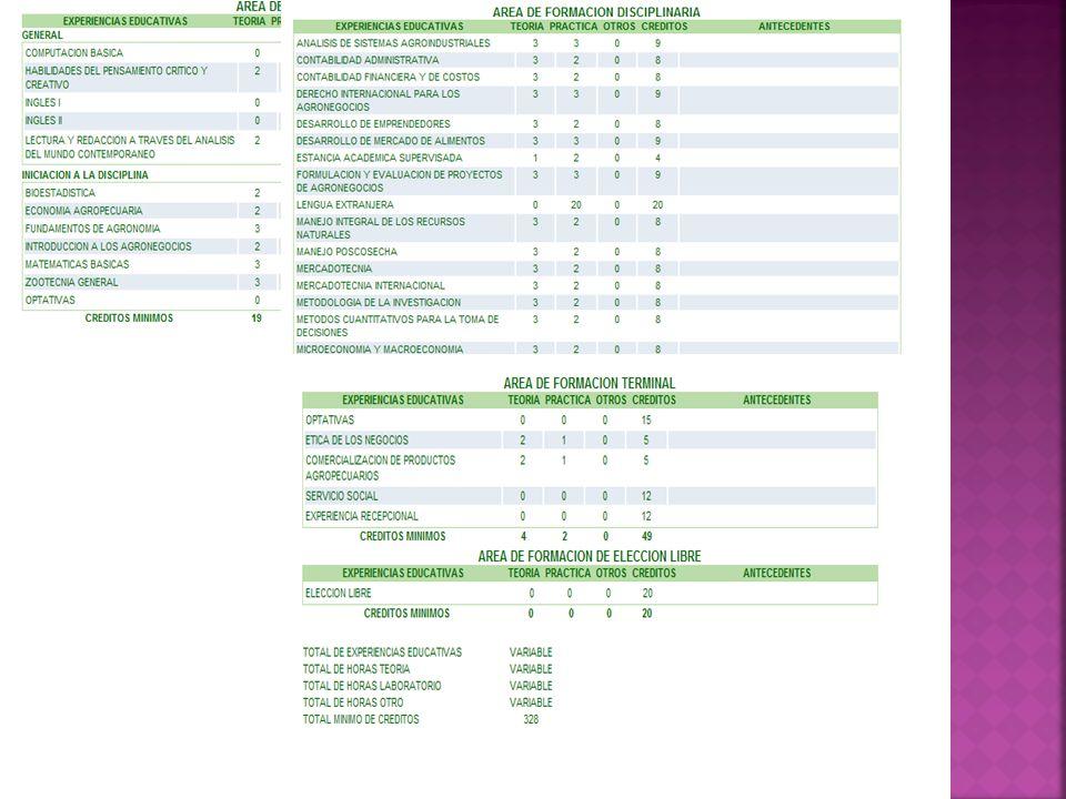 PERFIL PROFESIONAL DE EGRESO Evaluar y diagnosticar la problemática nutricia y su relación con el entorno, en el ámbito individual y colectivo.