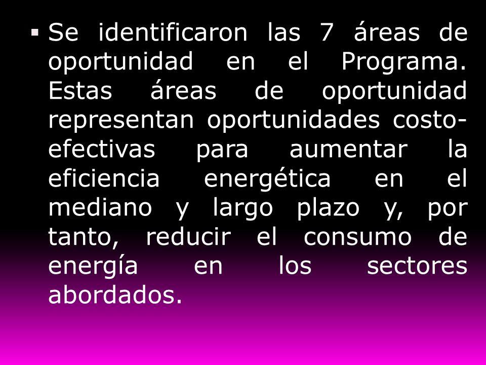Se identificaron las 7 áreas de oportunidad en el Programa. Estas áreas de oportunidad representan oportunidades costo- efectivas para aumentar la efi