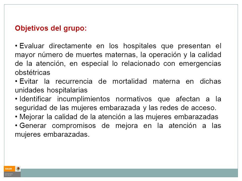 Objetivos del grupo: Evaluar directamente en los hospitales que presentan el mayor número de muertes maternas, la operación y la calidad de la atenció